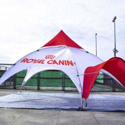 арочный шатер 1