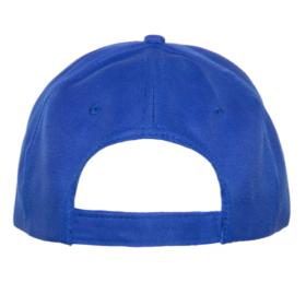 Кепка 10Р - синий back